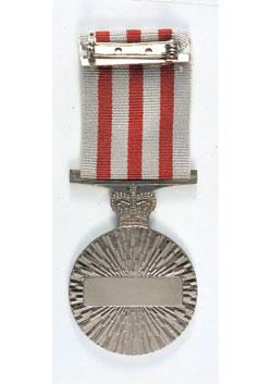 Distinguished Service Medal back