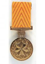 Medal for Gallantry