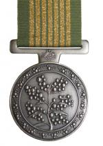 National Emergency Medal front